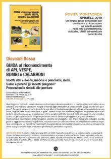 Giovanni Bosca, GUIDA AL RICONOSCIMENTO DI API, VESPE, BOMBI E CALABRONI