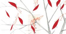 NOVITA' AGOSTO - La danza delle foglie